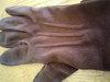 brownglove
